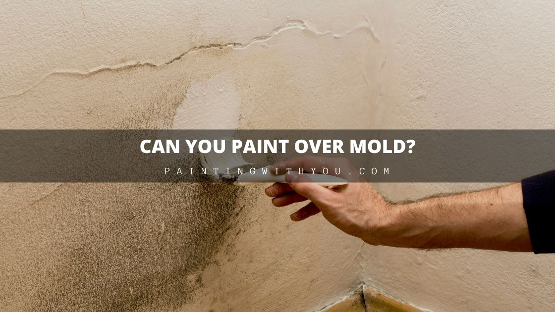 Can you paint over mold in my home